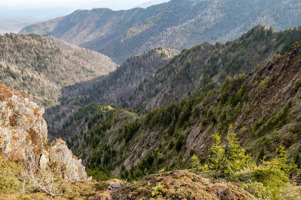 Smokey Mountains, NC