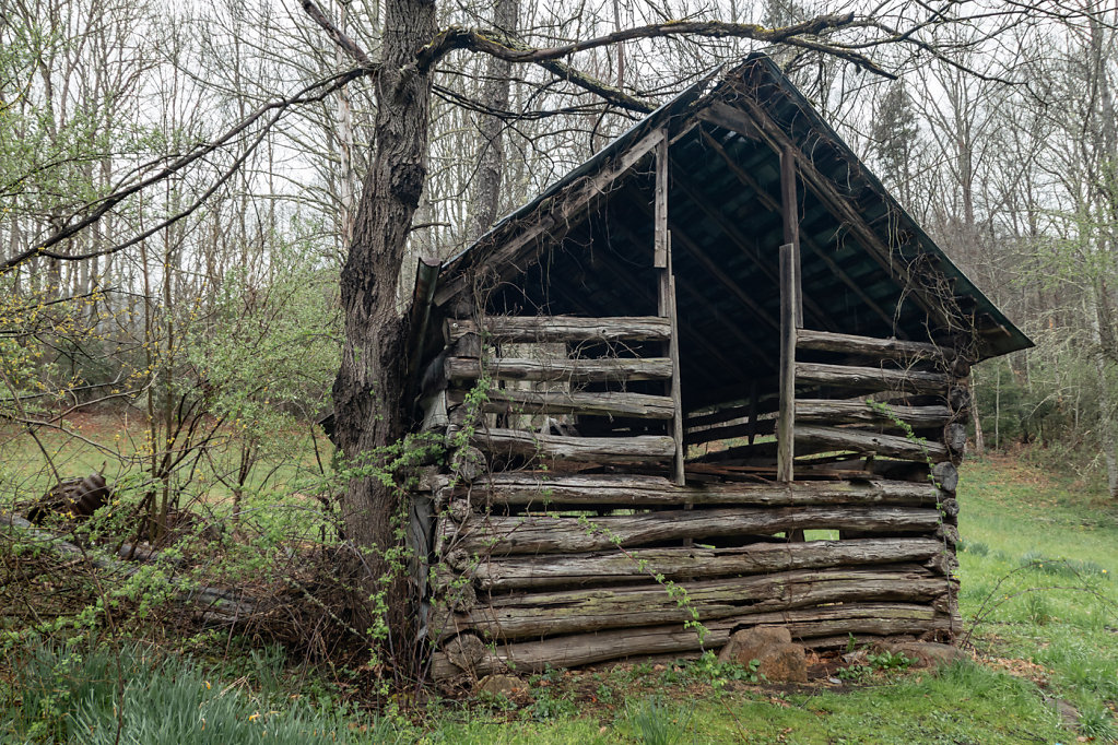 Logs, NC